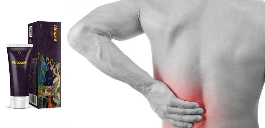 Membaca ulasan di forum tentang Artropant
